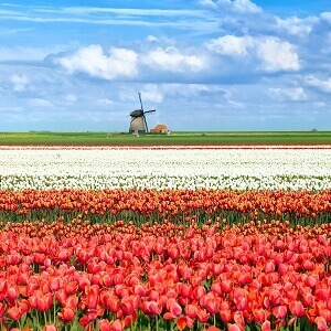 guide de voyage Pays-Bas
