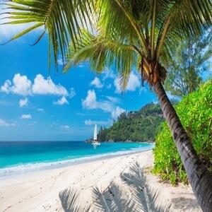 guide de voyage Jamaïque