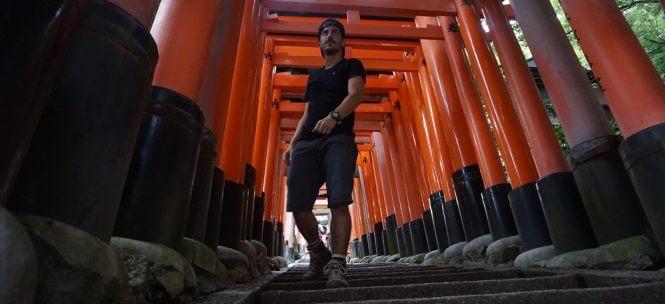 Temples japonais : tour d'horizon !