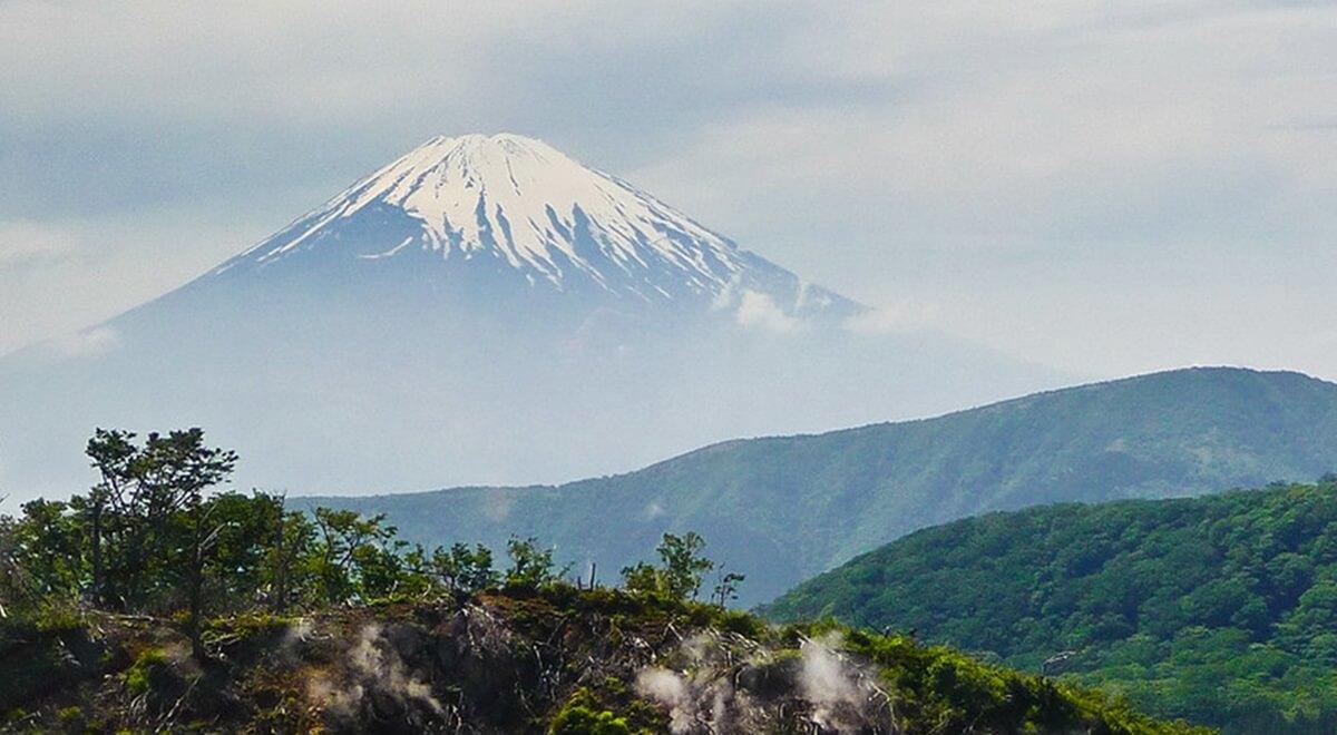 Top 3 des plus beaux parcs à visiter lors d'un séjour au Japon