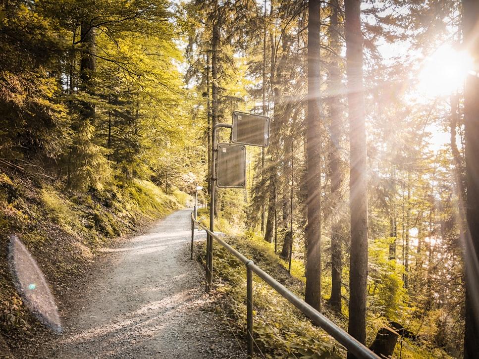 6 sorties atypiques pour visiter la Suisse autrement !