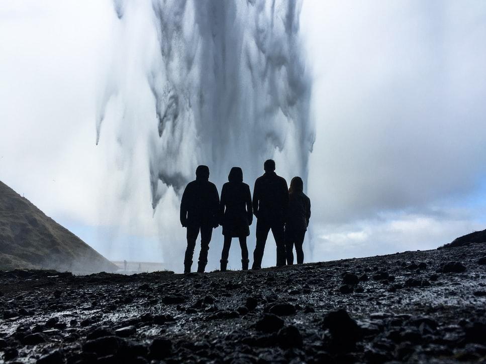 Partir entre amis, observer les baleines en Islande
