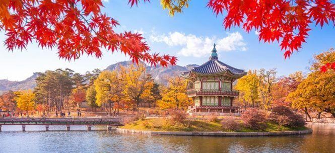 Visiter Seoul : cinq petites merveilles de la ville !