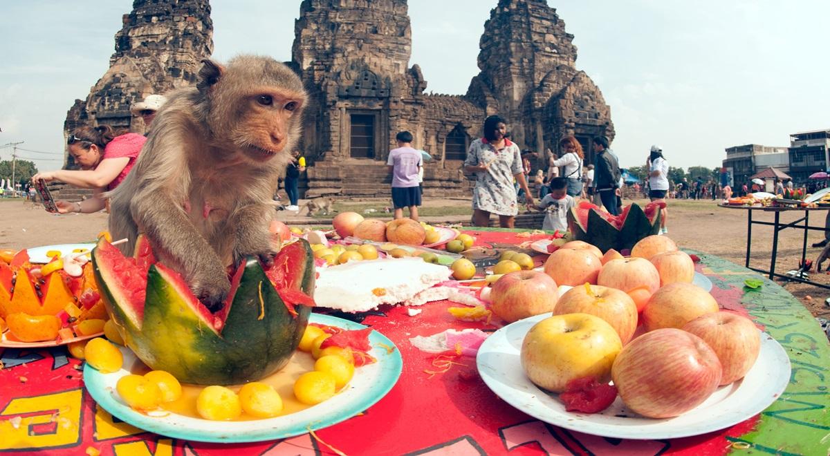 Les festivals et rassemblements les plus étranges du monde