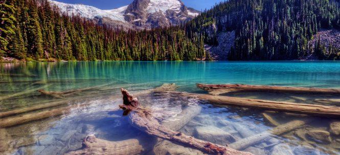 Voyage au cœur des 5 parcs nationaux les plus célèbres de l'Ouest Américain !