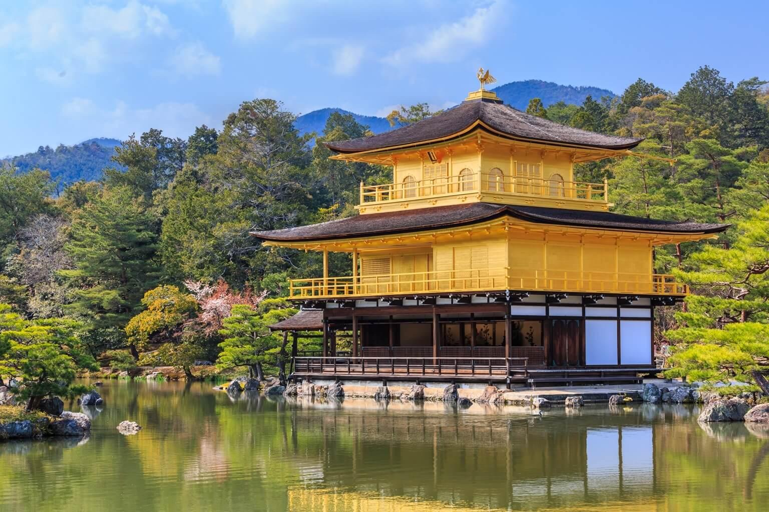 d tente et loisirs au japon ready to go. Black Bedroom Furniture Sets. Home Design Ideas