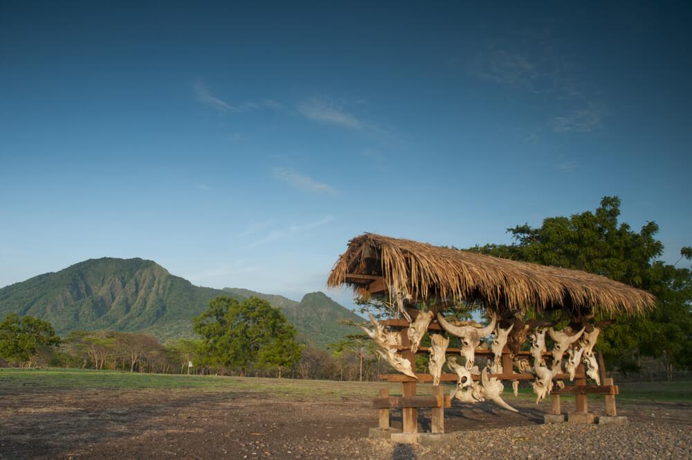 visiter Indonésie : zoo