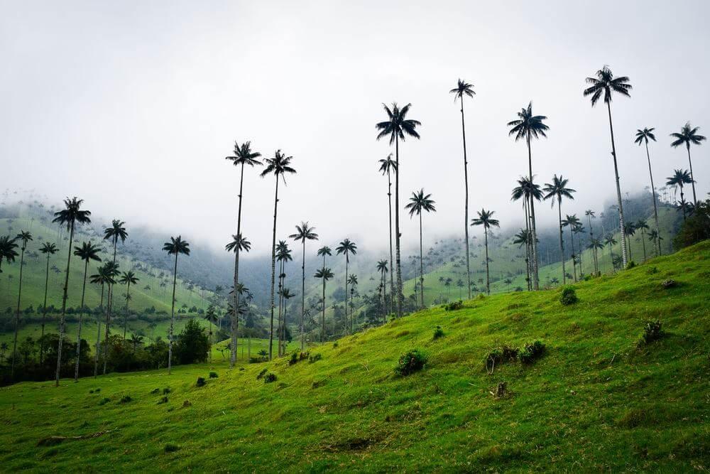 climat en Colombie