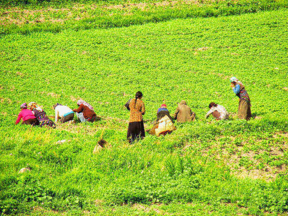 travailler au népal