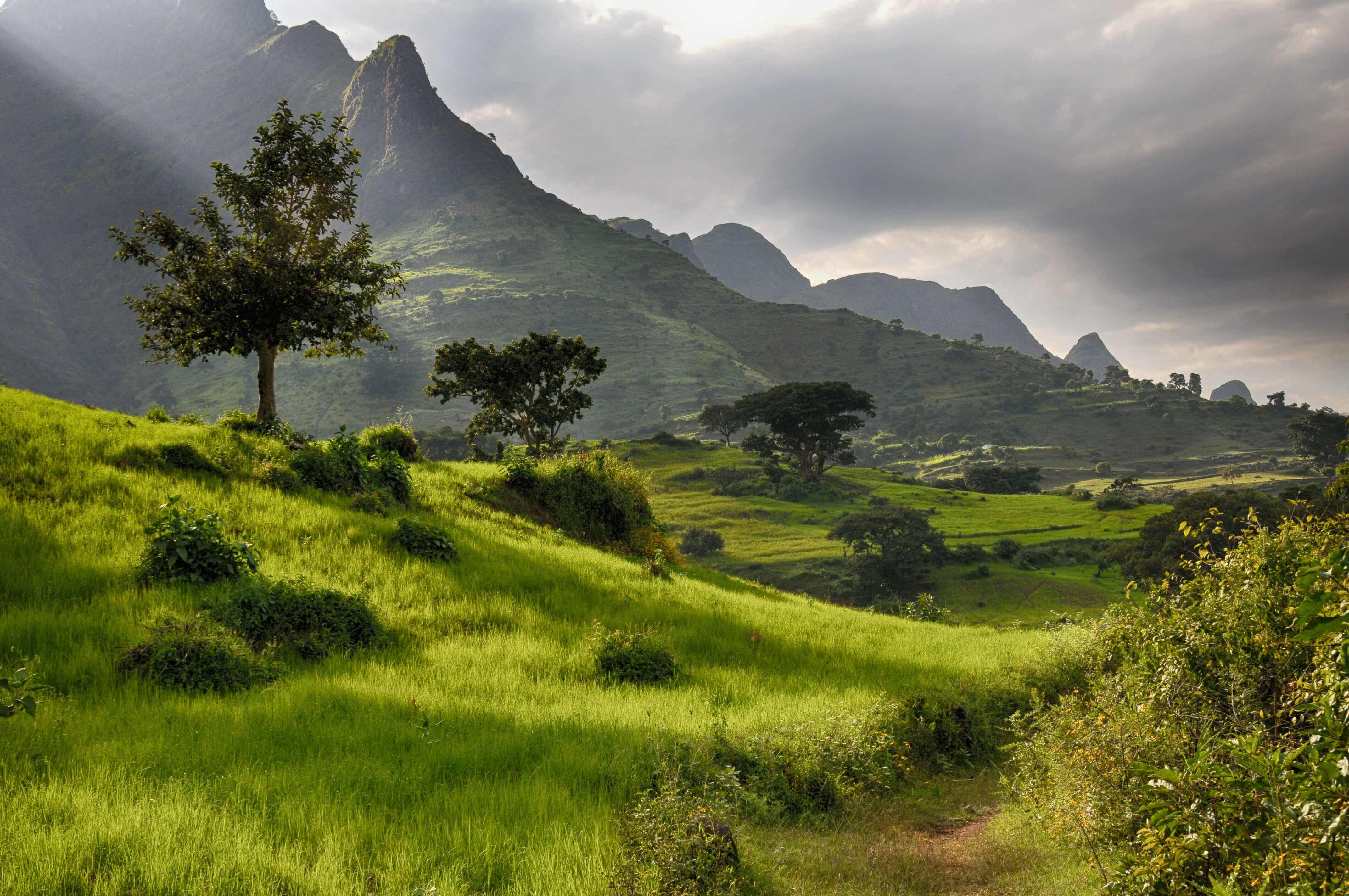 climat en Ethiopie