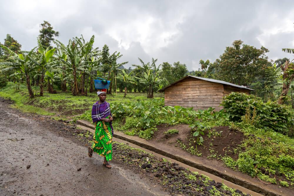 visiter le Congo